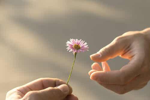 El concepto de generosidad desde una perspectiva psicológica