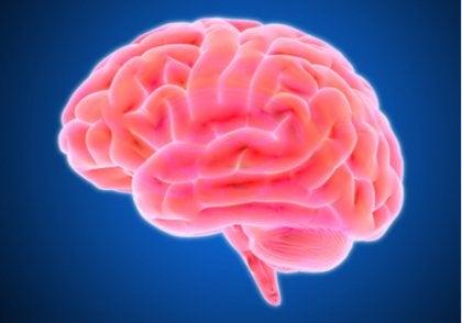 La falta de oxígeno en el cerebro