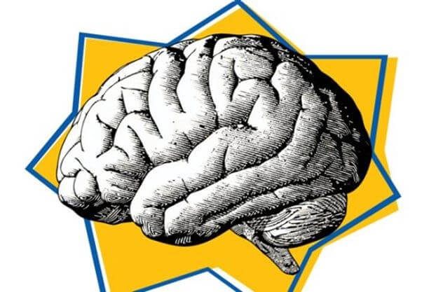 cerebro representando la psicología del Black Friday