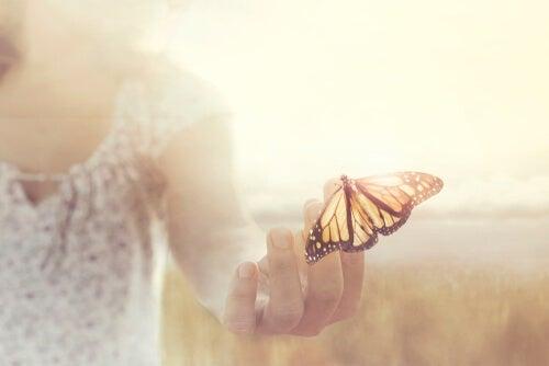 Mariposa en una mano