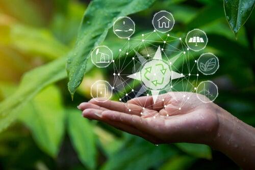 Valores ambientales