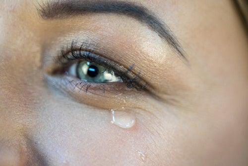 ¿Por qué lloramos de alegría?