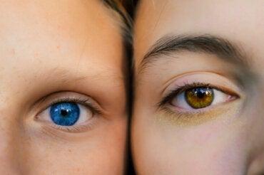 La Relación Entre El Color De Los Ojos Y La Personalidad Según Un Estudio La Mente Es Maravillosa