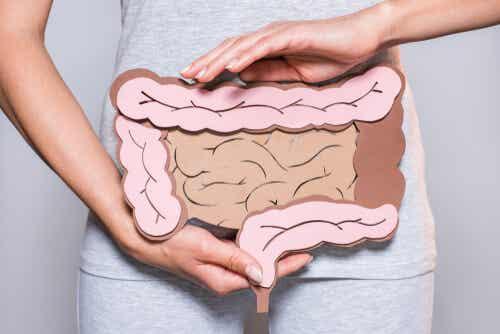 La digestión mental: clave en los problemas intestinales