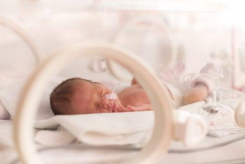 Neonato en una incubadora