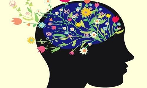 ¿Podemos entrenar el cerebro para ser felices?