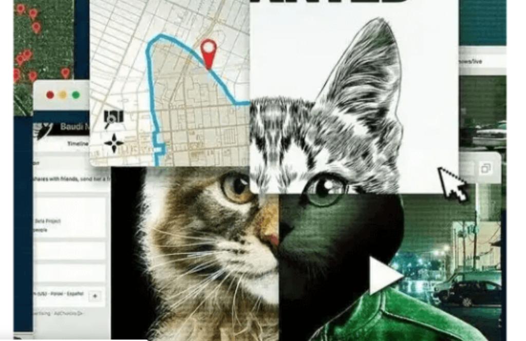 """""""A los gatos, ni tocarlos. Un asesino en Internet"""": lo oscuro de la red"""