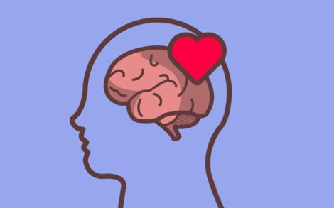 Corazón sobre el cerebro de una persona