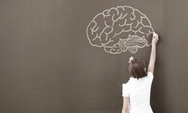 ¿Por qué los psicólogos utilizan el WISC?