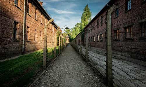 Una fantástica historia de amor en Auschwitz