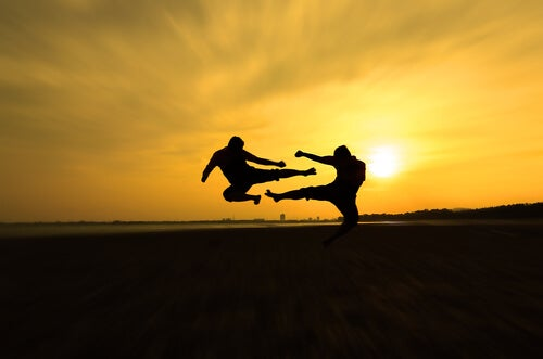Combate de artes marciales