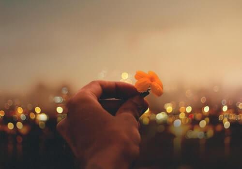 Las buenas intenciones si se acompañan de acciones, cambian el mundo