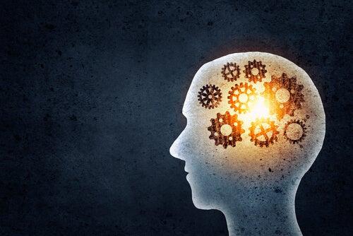 ¿Qué ganamos entrenando nuestra memoria?
