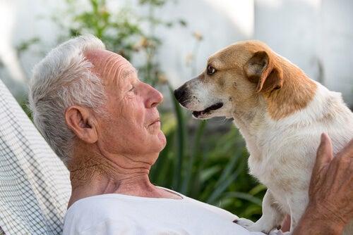 Persona mayor con su perro