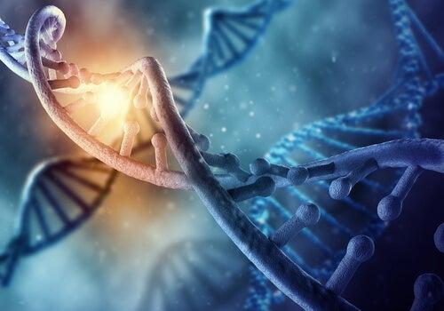 ¿El ADN puede ser reprogramado?