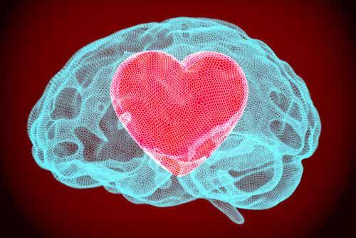 Autorregulación emocional: el otro solo muestra donde está la herida