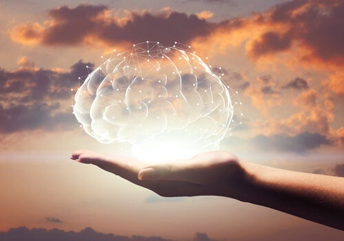 Cómo explica la psicobiología la conducta humana