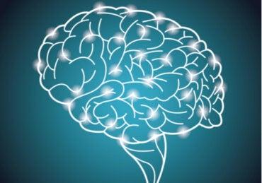 El experimento más grande del mundo sobre la inteligencia