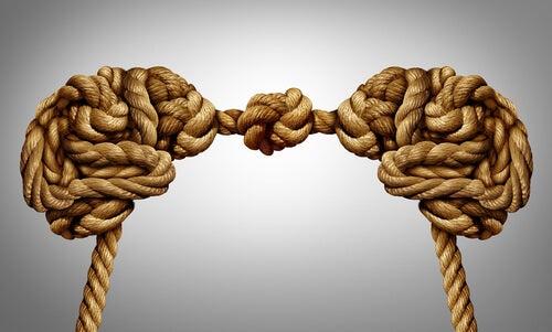Dos cerebros unidos con cuerdas