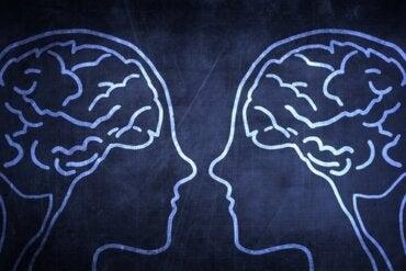 El fascinante experimento sobre la comunicación cerebro a cerebro