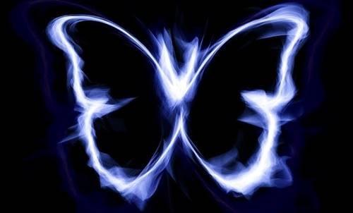 Mariposa iluminada