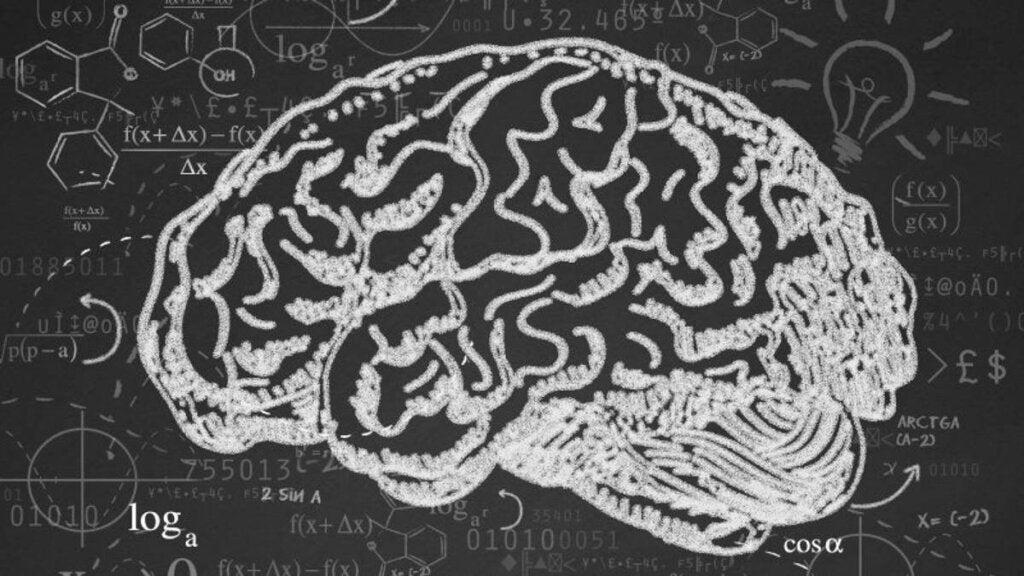 Cerebro representando la Velocidad de procesamiento cognitivo