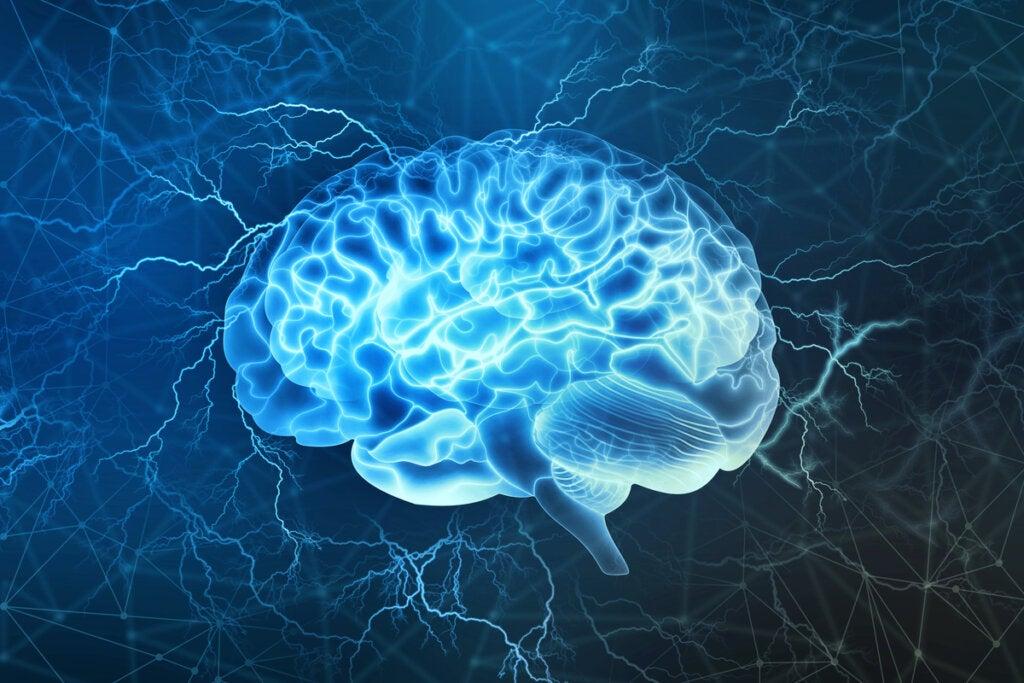 Cerebro representando cómo conseguir lo que quieres