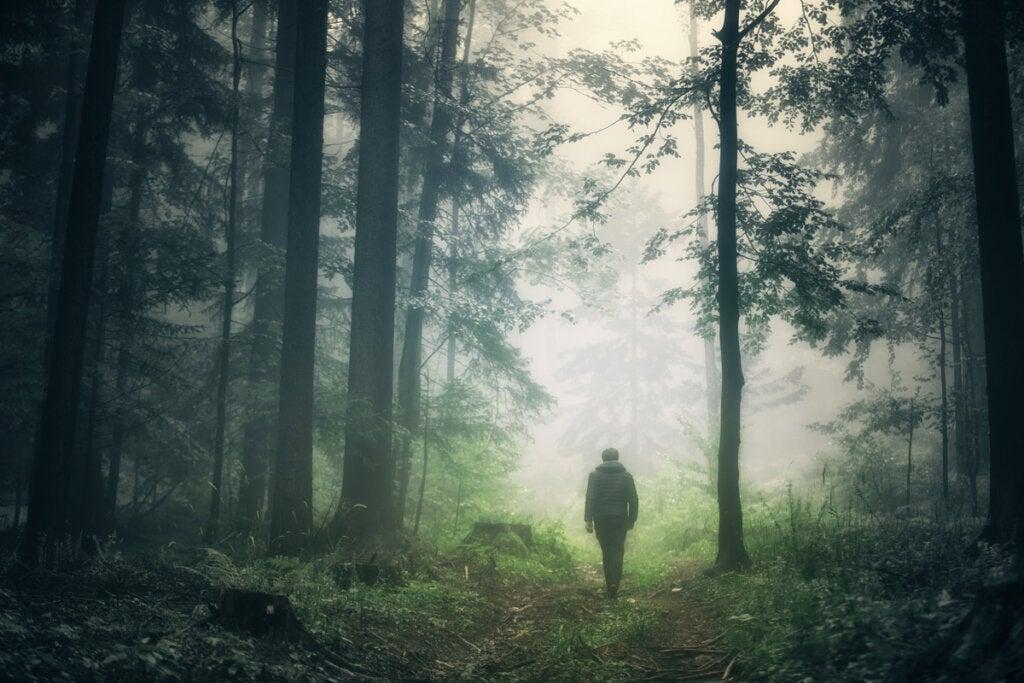 Christopher Knight, un hombre que eligió la soledad total