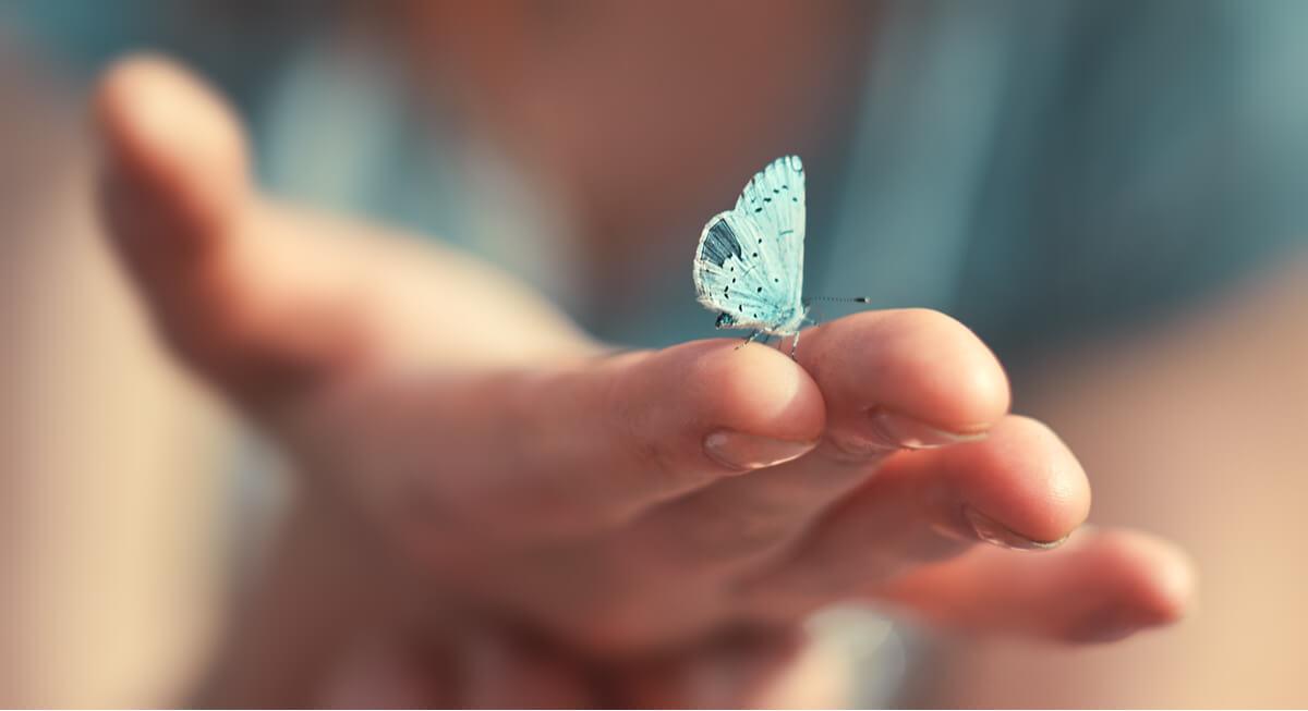 Mano con una mariposa