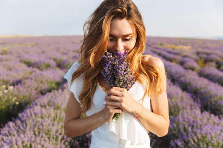 ¿Qué es la memoria olfativa y cómo funciona?