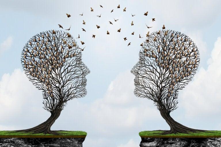 El efecto del falso consenso