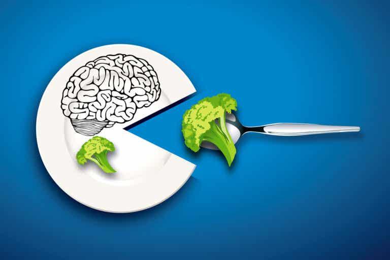 Alimentación y cerebro: cómo la comida influye en nuestro funcionamiento