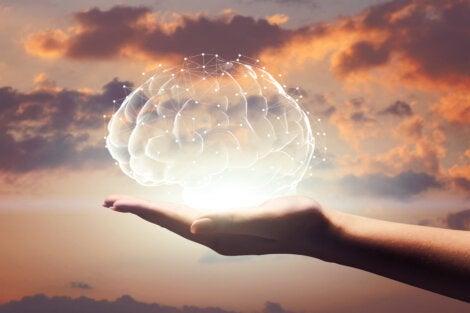 Mano sujetando un cerebro