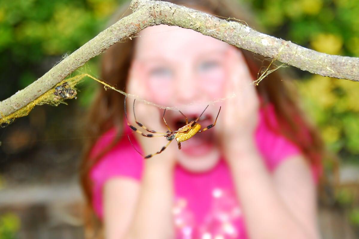 Niña gritando por una araña