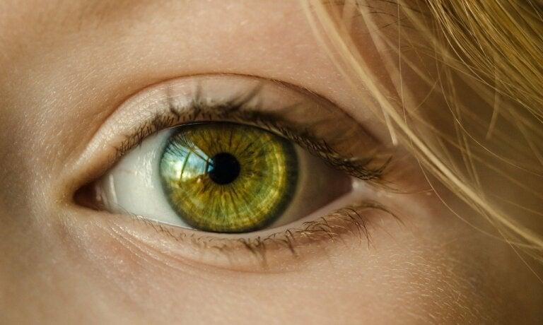 Fotofobia o sensibilidad a la luz: síntomas, causas y tratamiento