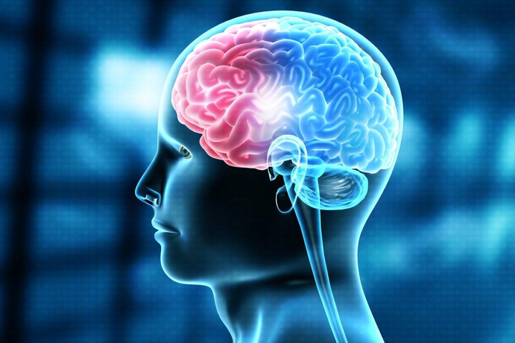Persona con una lesión cerebral