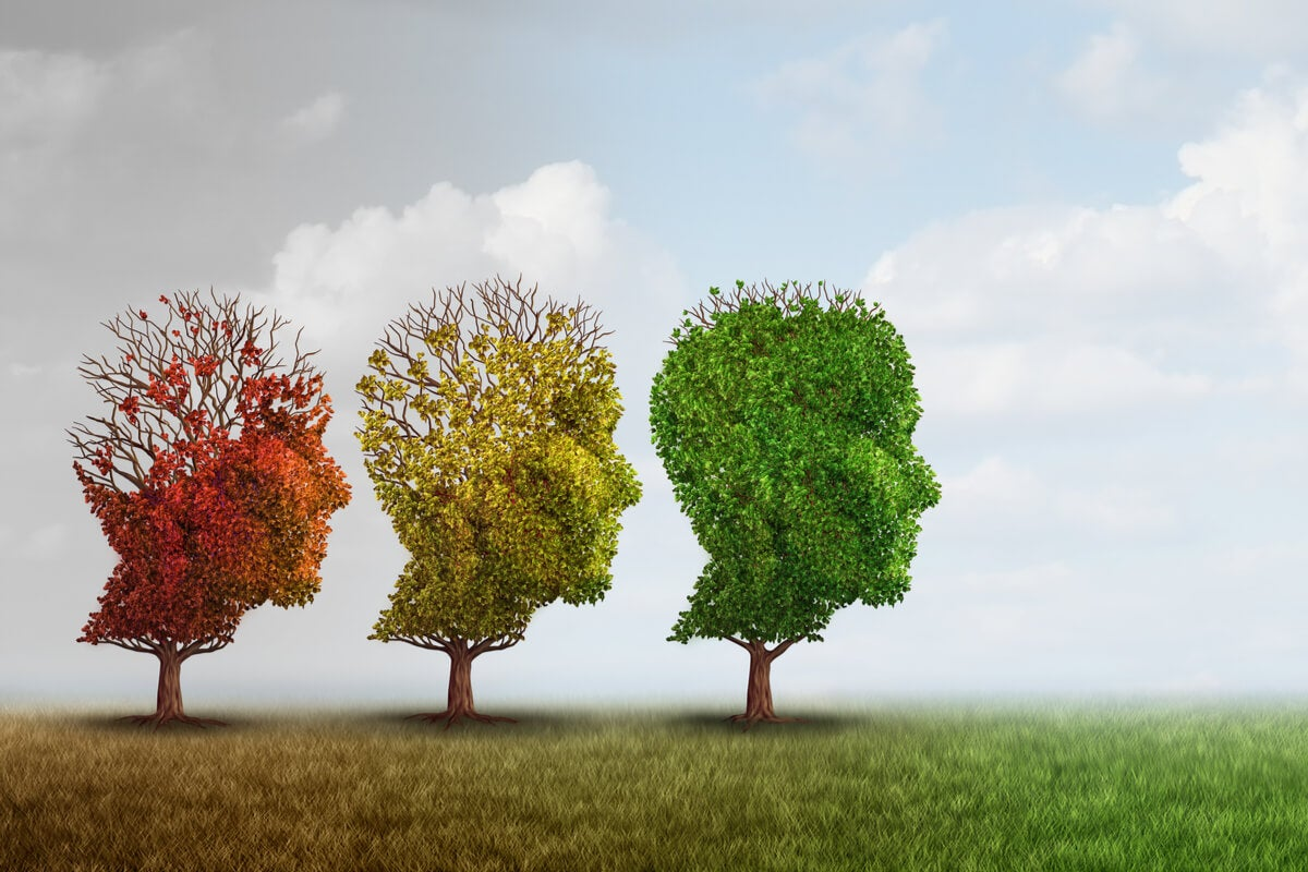 Tres árboles para representar el trauma ancestral silenciado