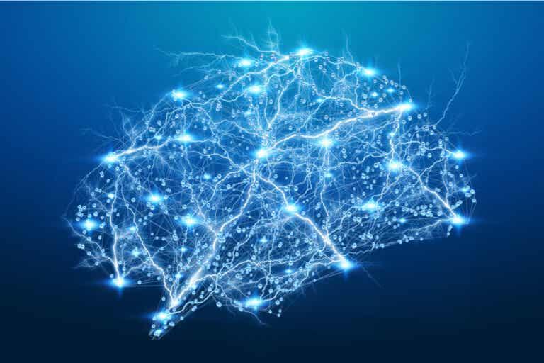 ¿Qué es el factor neurotrófico derivado del cerebro (BDNF)?