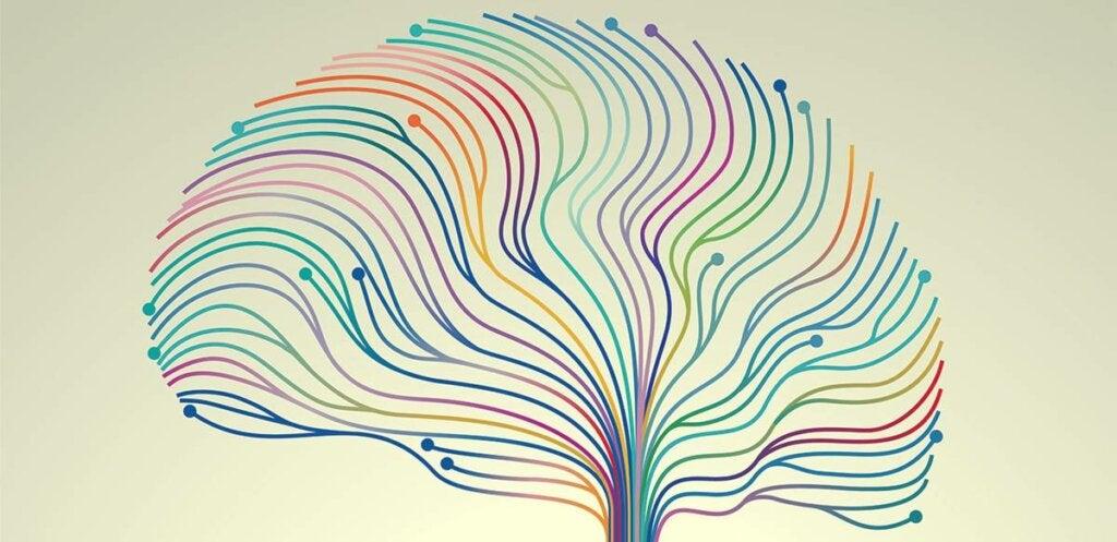 Glicina actuando en el cerebro