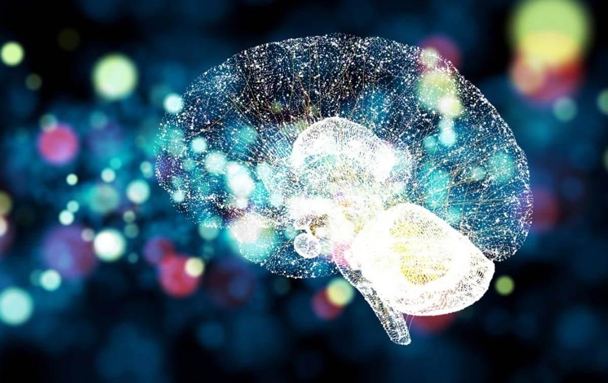 Cerebro iluminado representando la cuestión de dónde está ubicada la mente humana