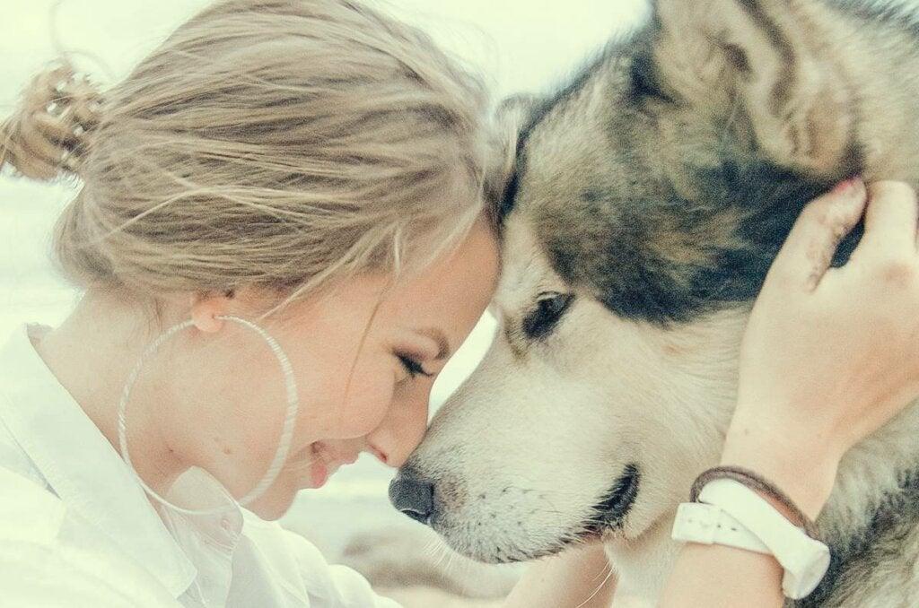 Chica con su husky trabajando la ansiedad por separación en perros