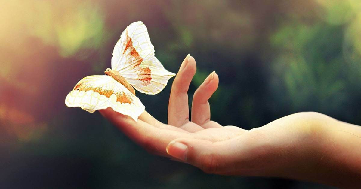 Mariposa simbolizando el cambio cuando no me gusta mi vida