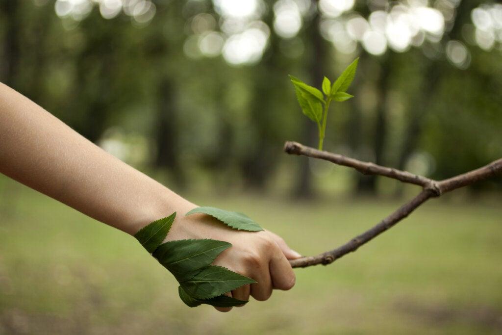 El amor fati: una reconciliación hermosa con nuestra naturaleza