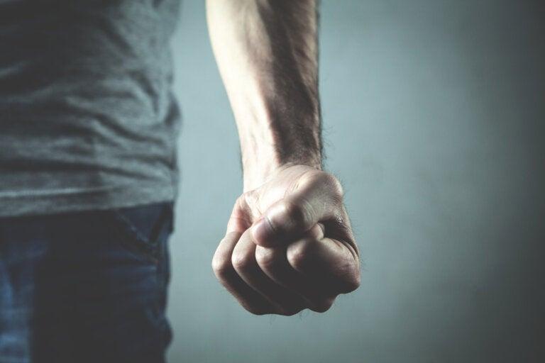 Causas de la agresividad