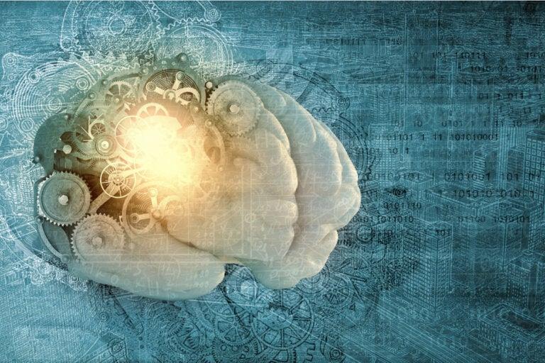 ¿Qué es la metamemoria?