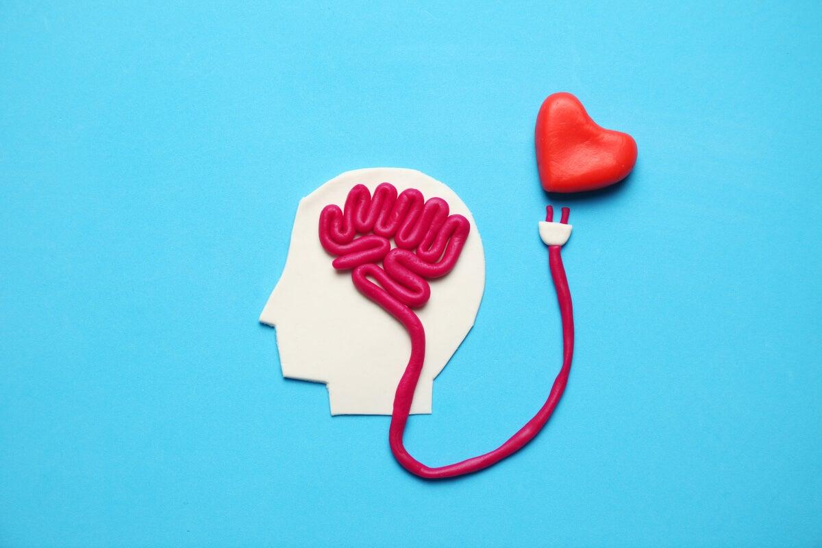 Cerebro de una persona conectando con un corazón para representar las hormonas de la felicidad