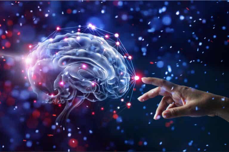 12 hábitos que cuidan el cerebro y reducen el riesgo de demencia