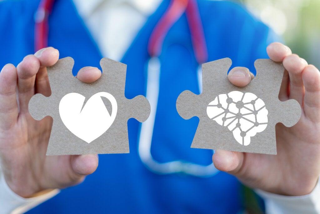Médico con pieza con un cerebro y con pieza con un corazón