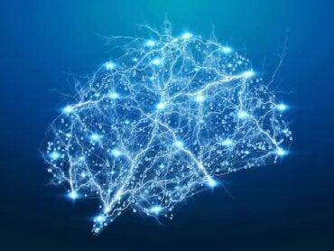 La psicoterapia, redes neuroplásticas y felicidad: ¿cómo se relacionan?