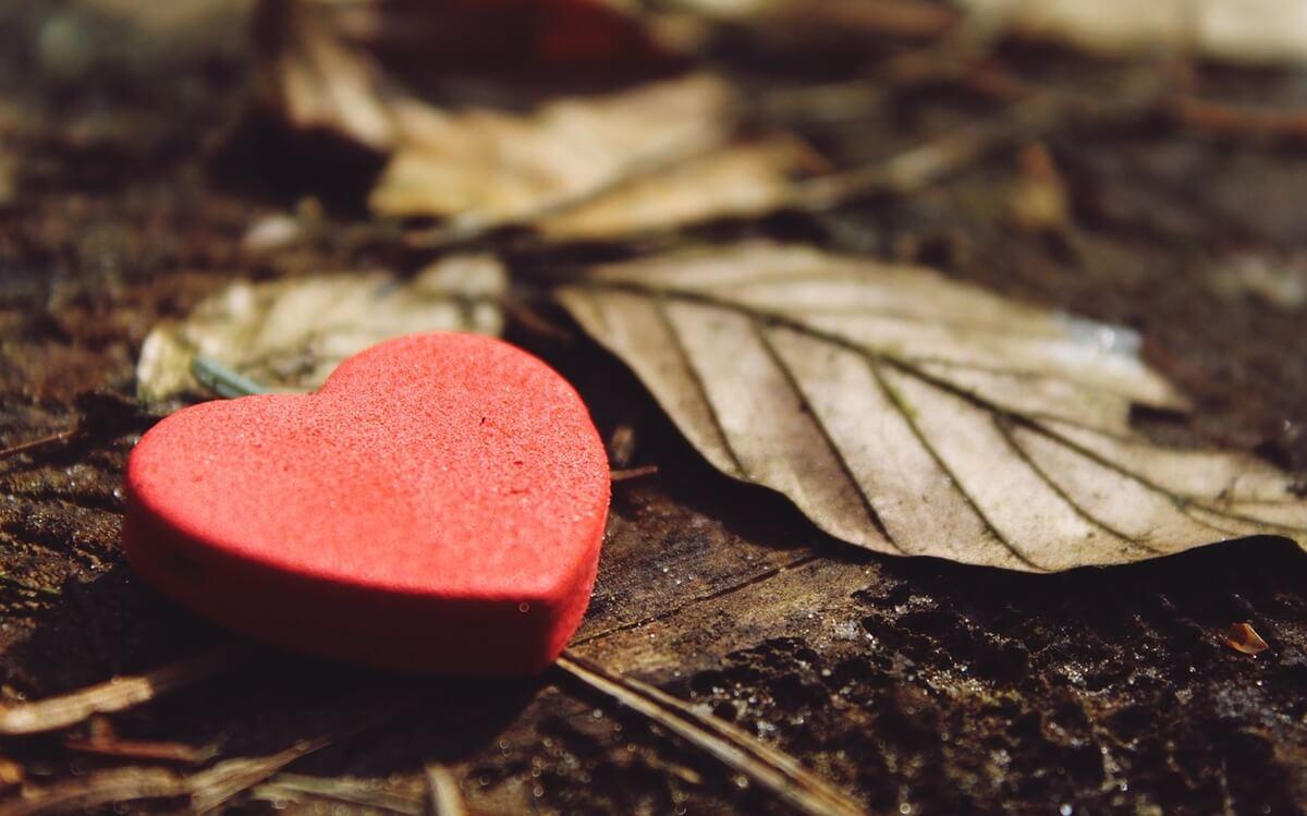 Corazón con hoja simbolizando cómo cambia la vida tras la muerte de un hijo